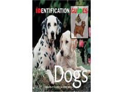 Identification Guides: Dogs